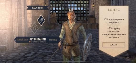 Почему вам не стоит играть в The Elder Scrolls: Blades?6