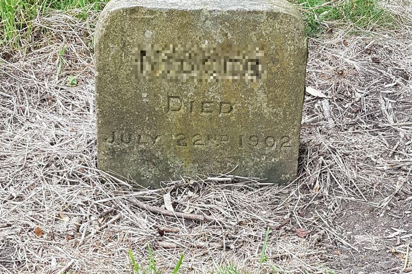 В Англии снесли могильный камень пса по кличке Nigger и другие проявления Black Lives Matter1