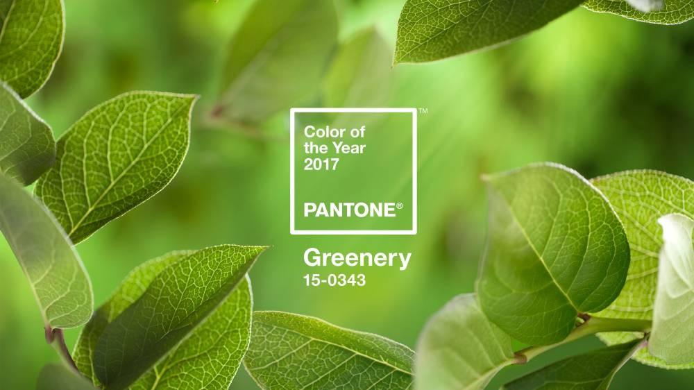 Институт Pantone определил цвет 2019 года2
