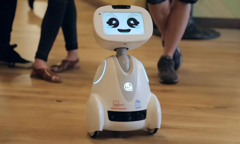 Больше, чем игрушки: домашние роботы3