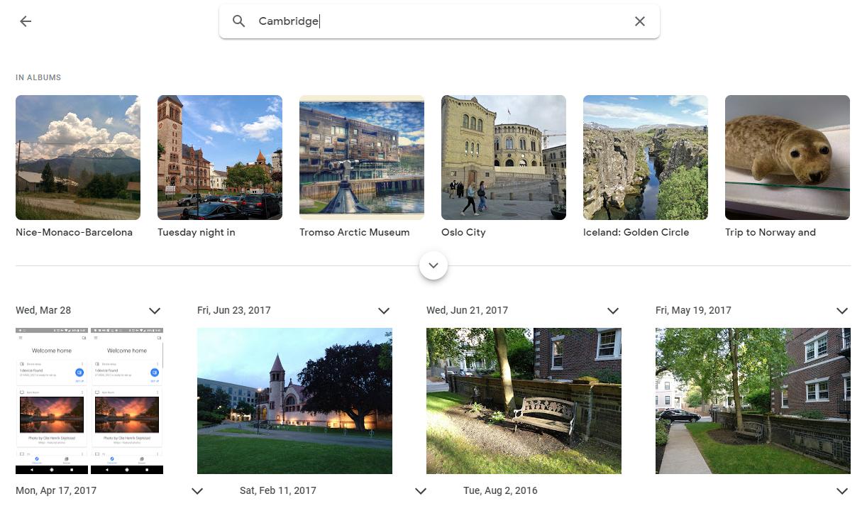 Веб-версия «Google Фото» обновилась для соответствия Material Theme5