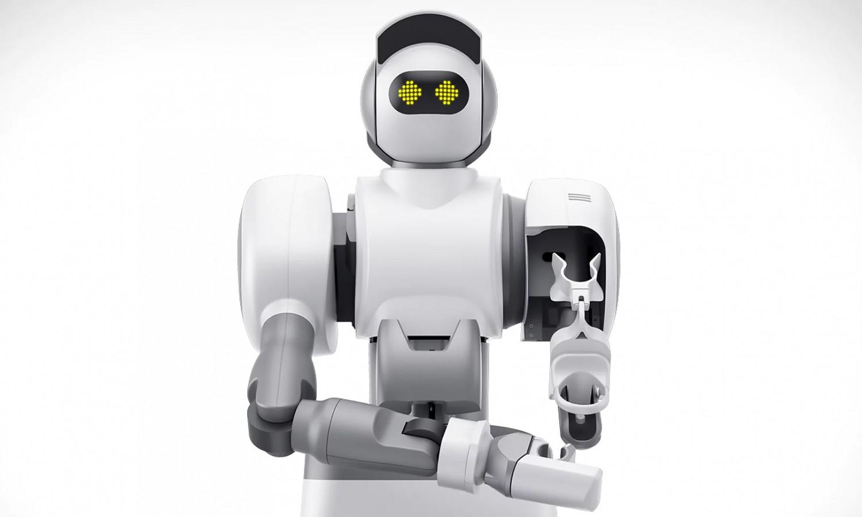 Больше, чем игрушки: домашние роботы1