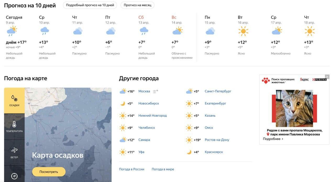 «Яндекс» запускает сервис по поиску потерявшихся домашних животных1